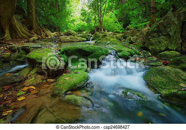 profundo, floresta verde, fundo, cachoeiras - csp24698427