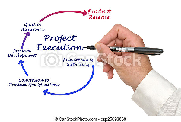 Project Execution - csp25093868