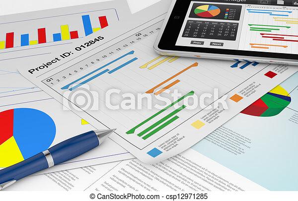 project management - csp12971285