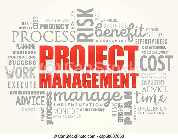 Project Management word cloud - csp68637860