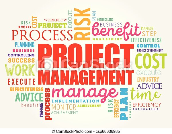 Project Management word cloud - csp68636985