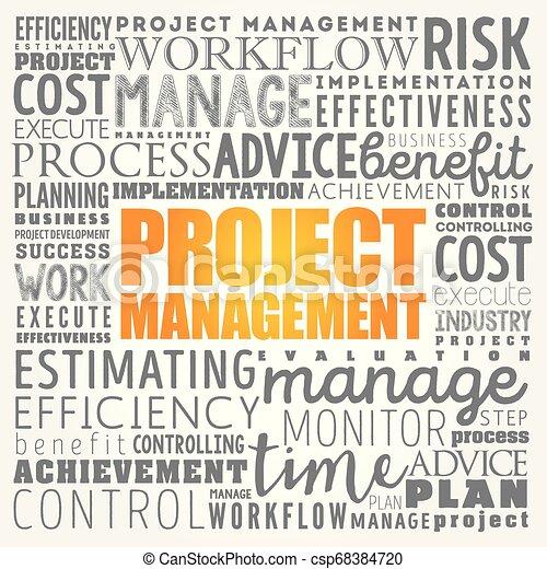 Project Management word cloud - csp68384720