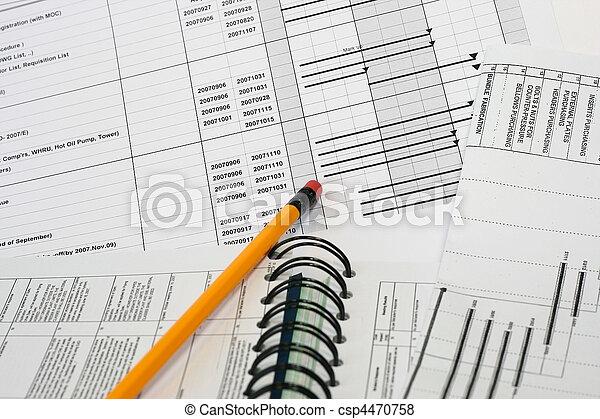 Project Schedule Outline - csp4470758