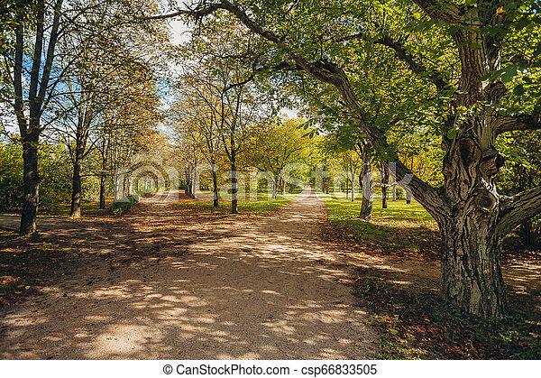Promenade in a beautiful city park - csp66833505