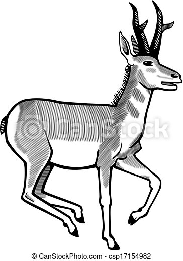 vector illustration of a pronghorn antelope running vector search rh canstockphoto com