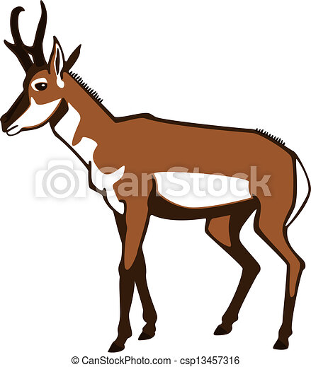 vector illustration of a pronghorn antelope standing vector clip rh canstockphoto com antelope clipart black and white antelope running clipart