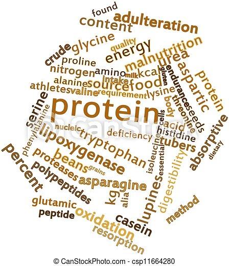 proteïne - csp11664280