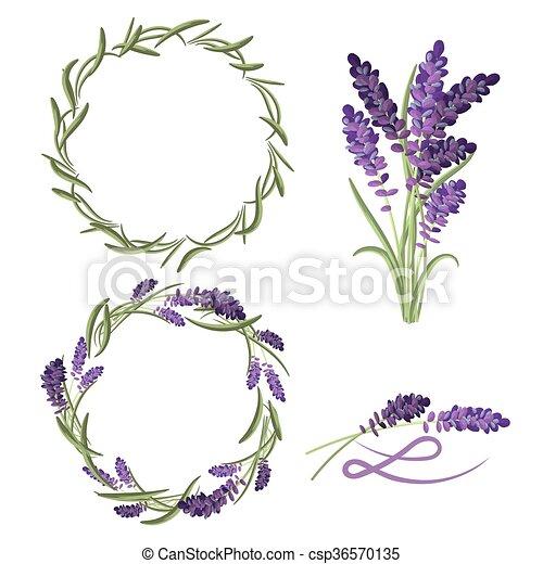 provence lavender flower bouquet set violet lavender lavender clipart black and white lavender clipart black and white