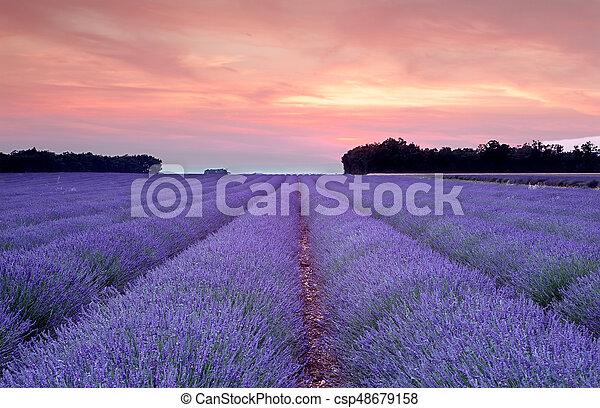 Provence sunset - csp48679158