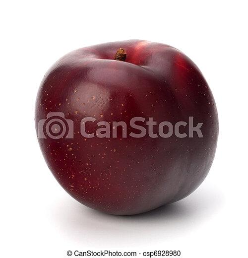 prugna, frutta, rosso - csp6928980