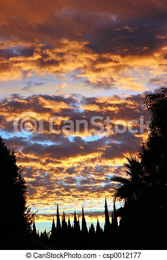 Psychadelic Sky #2 - csp0012177