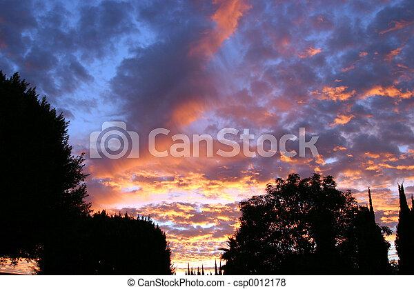 Psychadelic Sky #3 - csp0012178