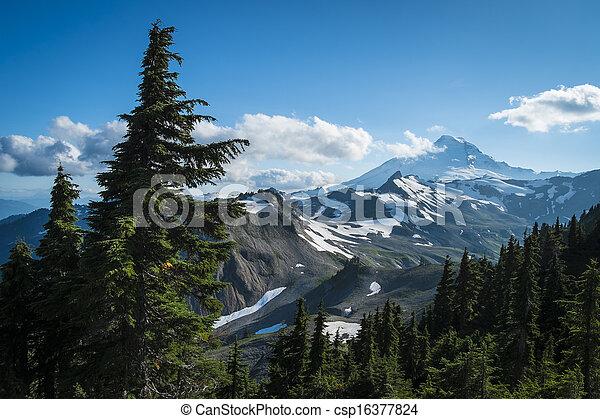 Ptarmigan Ridge on slopes of snowcapped Mount Baker, Washington state Cascades - csp16377824