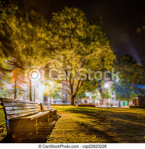 Public Park Benches At Night