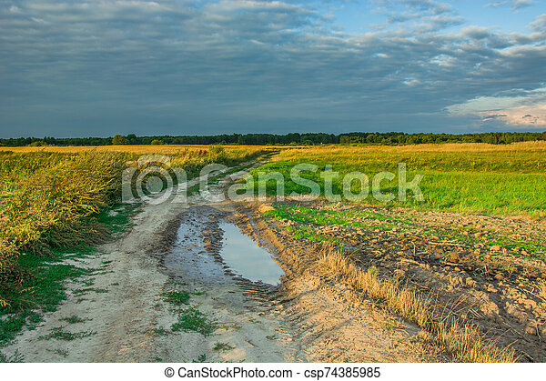 Puddle on a country road and rainy cloud - csp74385985