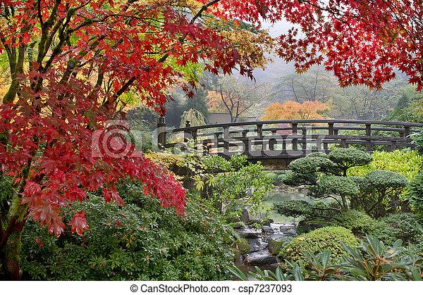 Árboles de arce japoneses junto al puente en otoño - csp7237093