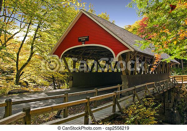 puente cubierto - csp2556219