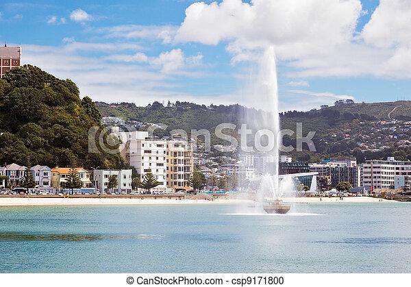 Waterfront Wellington Nueva Zelanda - csp9171800