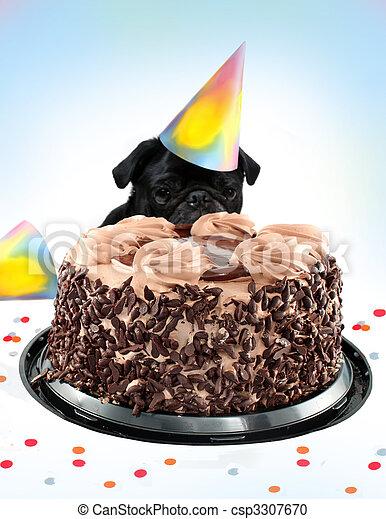 Fantastic Pug Birthday Cake Black Colored Pug Peeking Behind A Birthday Funny Birthday Cards Online Bapapcheapnameinfo