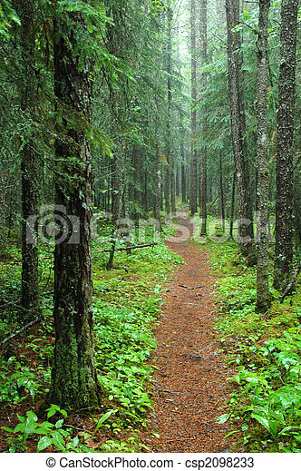 Pukaskwa Hiking Trail - csp2098233