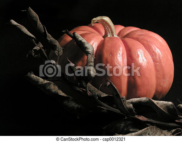 Pumpkin and Leaves - csp0012321