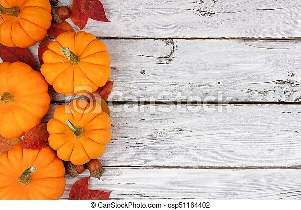 Pumpkin and leaves side border over rustic white wood