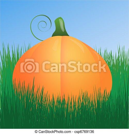 pumpkin - csp6769136