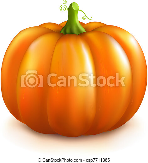pumpkin isolated on white background vector illustration
