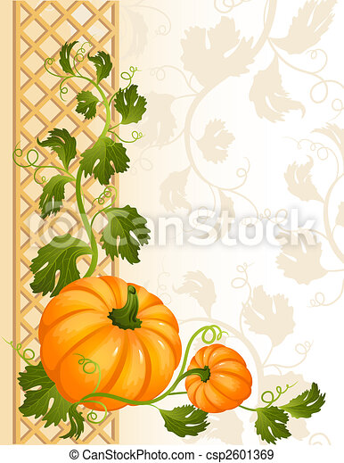 pumpkin - csp2601369