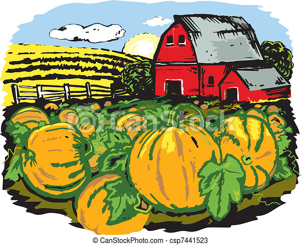 pumpkin farm scene with a pumpkin patch and barn in the vectors rh canstockphoto com pumpkin patch clipart free pumpkin patch clipart free