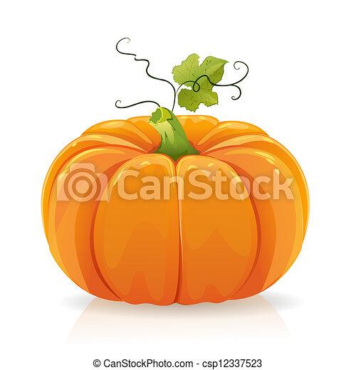 Pumpkin - csp12337523