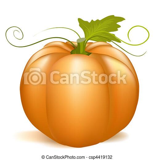 pumpkin - csp4419132