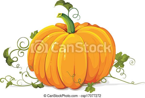 Pumpkin - csp17077272