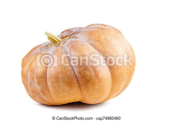 Pumpkin isolated on white background - csp74960460