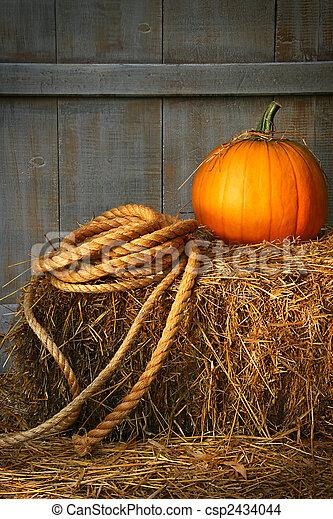 Pumpkin on a bale of hay - csp2434044