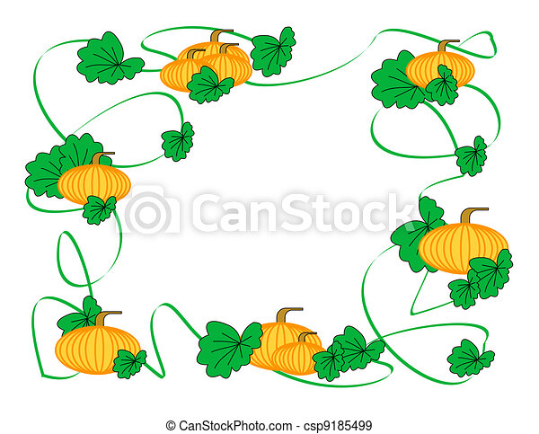 patch vine