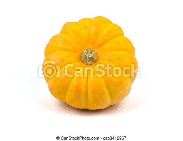 Pumpkin - csp3412967