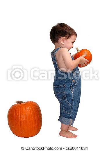 Pumpkin - csp0011834