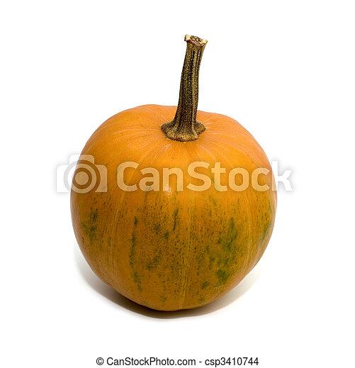 pumpkin - csp3410744