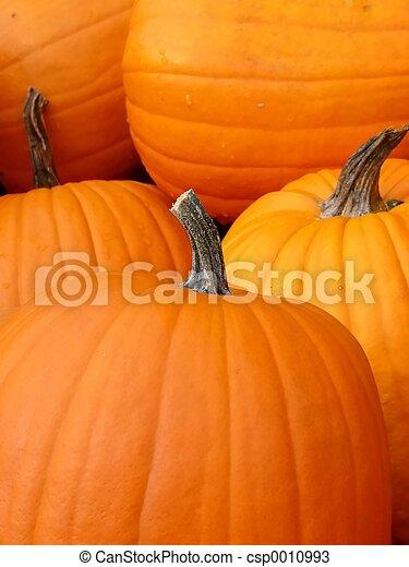 pumpkin - csp0010993