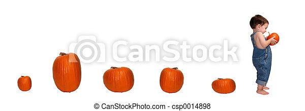 Pumpkin Trail - csp0014898