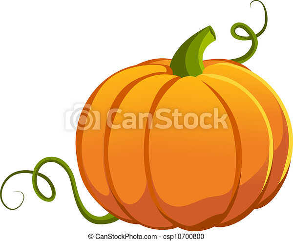 Pumpkin - csp10700800