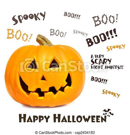 Pumpkin with halloween phrases on white - csp2434183