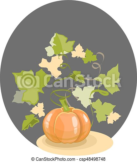 Pumpkin with leaves on a black background - csp48498748