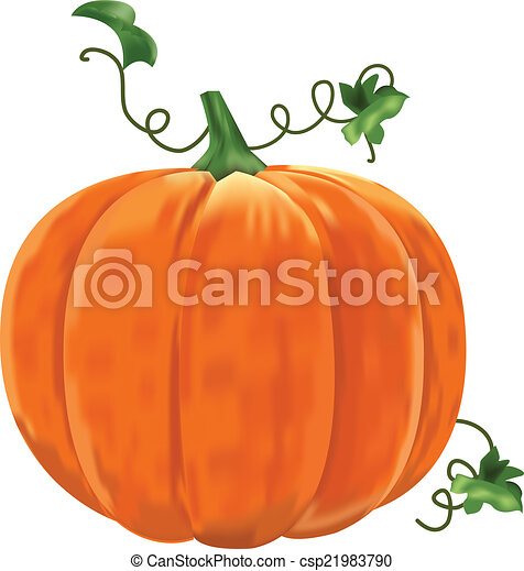 Pumpkin with leaves on a white background. - csp21983790