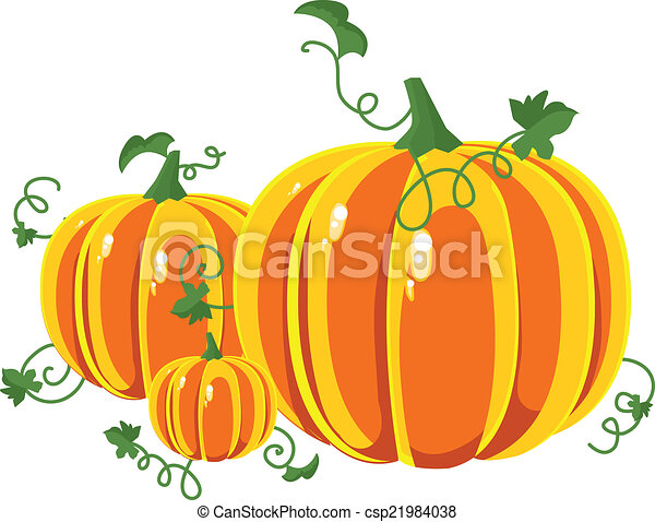 Pumpkin with leaves on a white background. - csp21984038