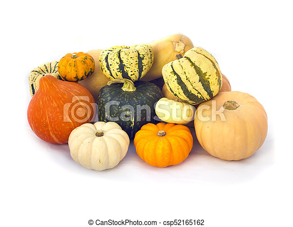 Pumpkins collection isolated on white - csp52165162