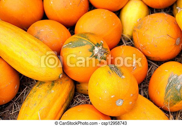 Pumpkins (Cucurbita moschata) - csp12958743