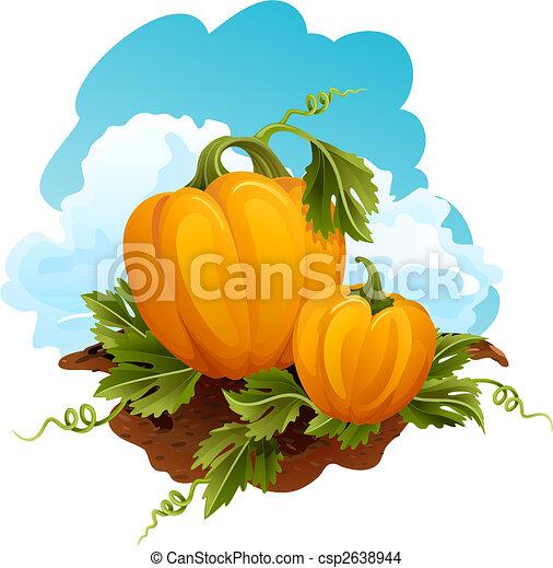 Pumpkins - csp2638944