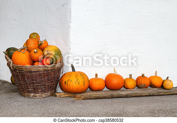 Pumpkins in a wicker basket and a row. Outdoors image in the autumn season. - csp38580532